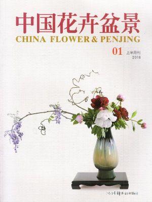 中国花卉盆景2018年1月期