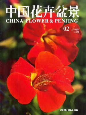 中国花卉盆景2018年2月期