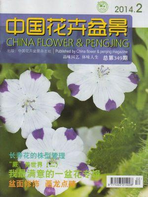 中国花卉盆景2014年2月期